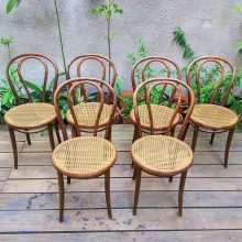 6 pcs. TON chairs no. 18
